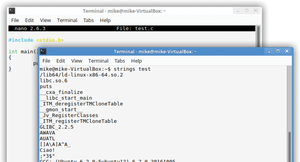 Figure 1: After compiling our simple C program, we can see the extra data that GCC puts inside the executable file.