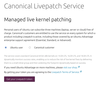 Figure 1: Canonical's Livepatch Service requires you to log in.